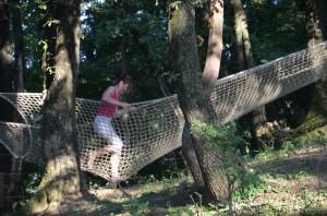 filet-dans-les-arbres